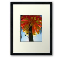 Red, orange and yellow Framed Print