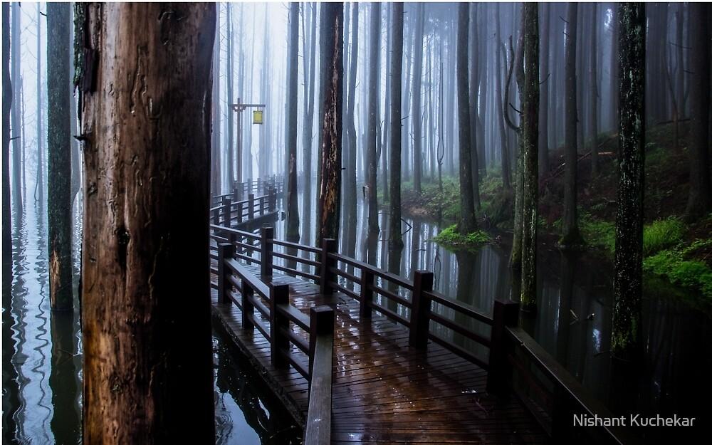 Walk The Planks by Nishant Kuchekar