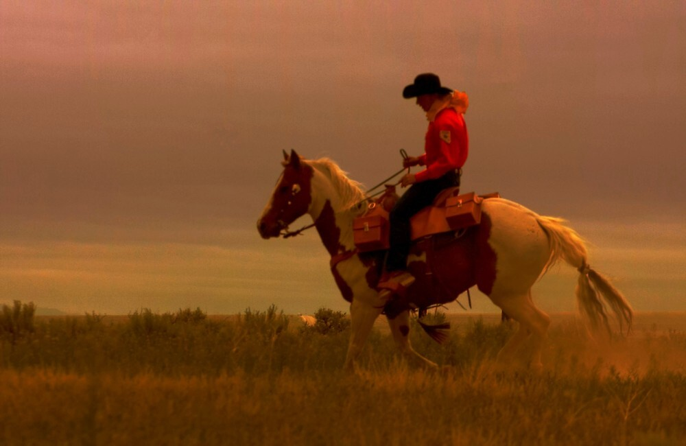 Pony Express Rider by Jeanne  Nations