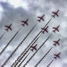 Red Arrows by Avril Harris