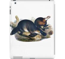 The platypus (Ornithorhynchus anatinus) painting iPad Case/Skin