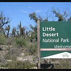 Little Desert  by Debbie  Jones