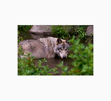 Timber Wolf In Pond Unisex T-Shirt