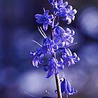 Blue Sparkles by OpalFire