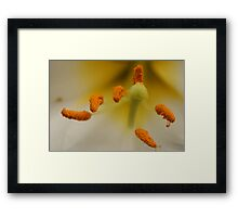suspended in the air Framed Print