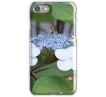 A Bumble Bee and Honey Bee Sharing iPhone Case/Skin