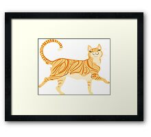 Pretty Kitty Framed Print