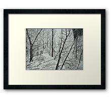 Frosty Perch (Full) Framed Print