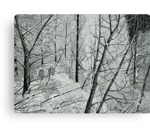 Frosty Perch (Full) Canvas Print