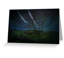 Tree@Night Greeting Card