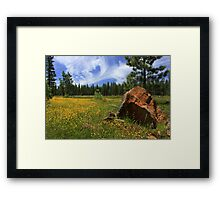 Springtime In Lassen County Framed Print