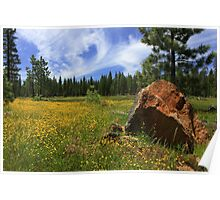 Springtime In Lassen County Poster