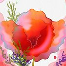Poppy by Elaine Bawden