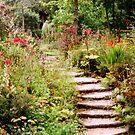 Romantic Garden 1 by steppeland