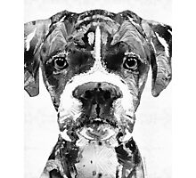 Black And White Boxer Dog Art By Sharon Cummings  Photographic Print