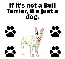 If It's Not A Bull Terrier Photographic Print