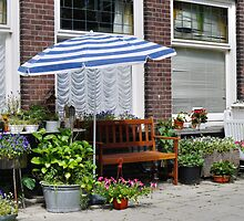 Not (quite) a terrace garden by Marjolein Katsma