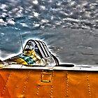Flying High by David Bobrick