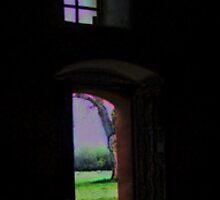 The Magical Door by Renee D. Miranda