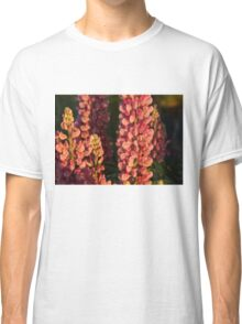 Hot Pink Lupines From My Mother's Garden Classic T-Shirt