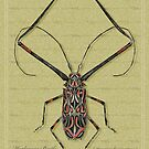 Harlequin Beetle by Beesty