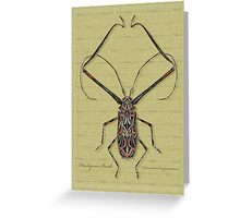 Harlequin Beetle Greeting Card