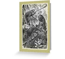 Chameleons Greeting Card
