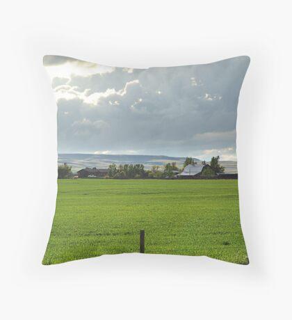 Prairie Afternoon Throw Pillow