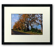 A Change OF Season #1 Framed Print