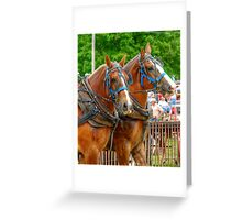 A Horse with a Moustache? Greeting Card