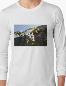 Facades and Fruit Trees - the Church and the Plum Long Sleeve T-Shirt