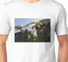 Facades and Fruit Trees - the Church and the Plum Unisex T-Shirt