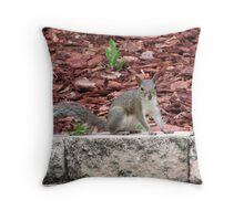 Posing For Peanuts Throw Pillow