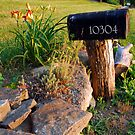 Country Road Mailbox by Jeanne Sheridan