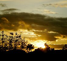 Southern Sunset - St. Paul, France by Britland Tracy