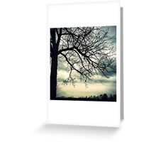 When the Branches Meet the Clouds Greeting Card