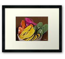 Decorator Sandals Framed Print