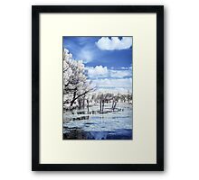 Eco Park IR again Framed Print