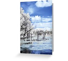 Eco Park IR again Greeting Card