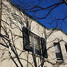 Shadows of Late Autumn, Royal Hotel, Springwood, Blue Mountains by Catherine Davis
