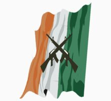 Irish Flag with meaning by greg fitzgerald
