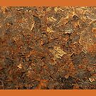 Bronze Heat by Linda Miller Gesualdo