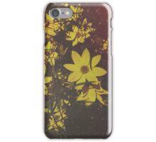 Suncatchers  iPhone Case/Skin