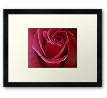 "Fine art. Rose ""Red PASSION"". Oil painting. Nature. Flower. Framed Print"