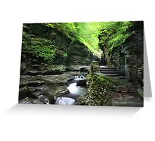Over 800 Steps Greeting Card