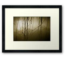 Klong Framed Print