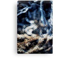 Friscalating Frostlight #3 Canvas Print