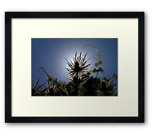 king of the sea hollies Framed Print