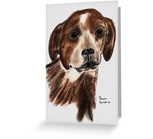Jack Russel Greeting Card