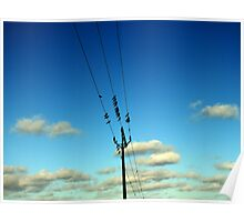 Birds on string. Poster